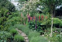 Learn landscape construction garden design business for Landscape design courses home study