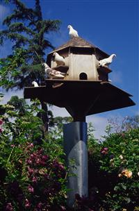 pigeon house plans