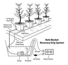 Hydroponic Production Course Online Hydroponic