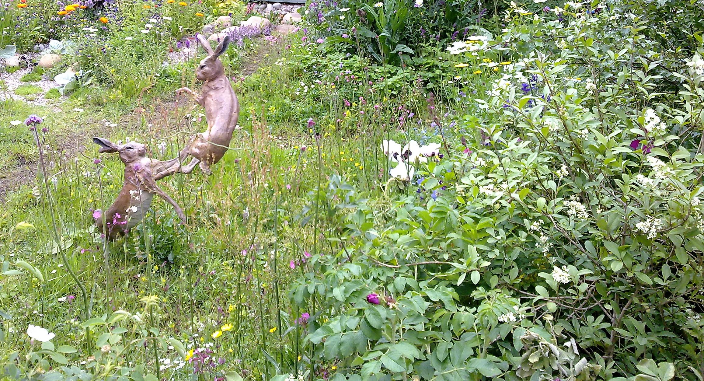 Rhs level ii online course garden planning for Garden design qualifications